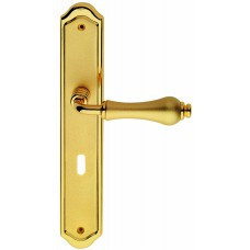 Aldar ручка на планке (золото/золото матовое)